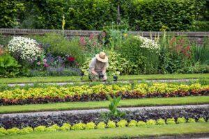 dotacja na firmę ogrodniczą
